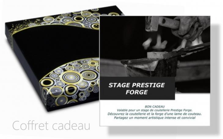 COFFRET CADEAU STAGE COUTELLERIE PRESTIGE FORGE 3 JOURS LACAZE CHRISTOPHE